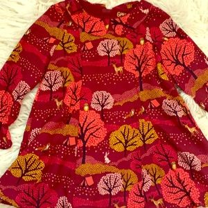 3T OshKosh fall dress